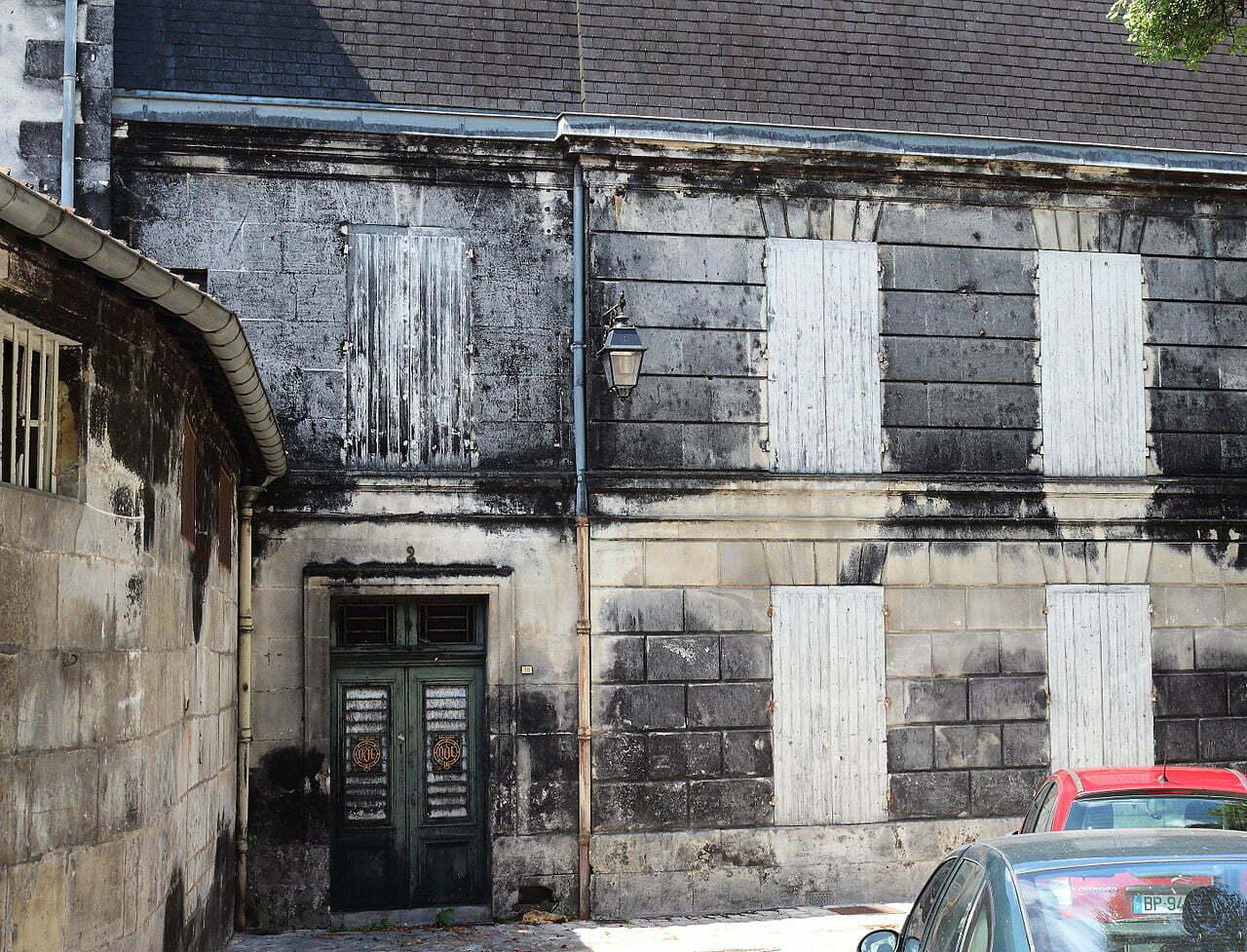 Moisissure_part_des_anges_chateau_Cognac