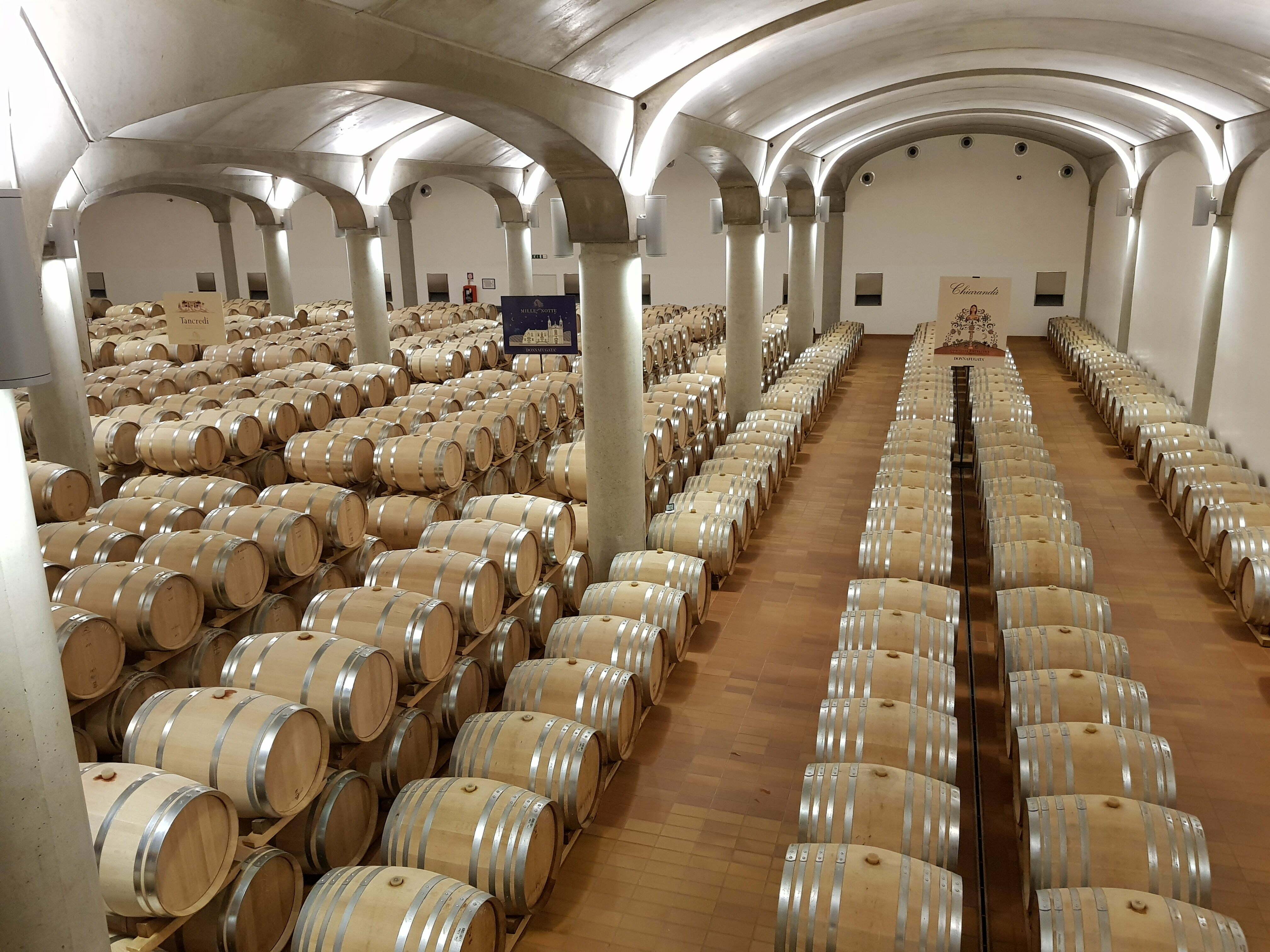 מרתף היין של דונפוגאטה